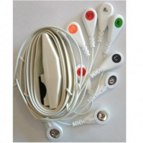 Cable Completo Holter, 10 leads, Mortara